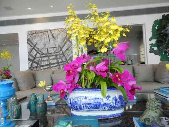 2013 06 Flores Anamaria 004