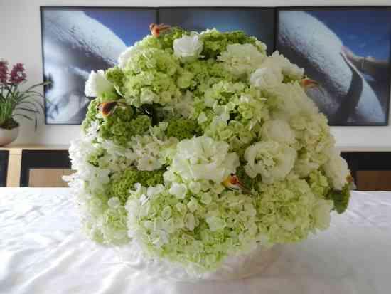 2013 06 Flores Anamaria 011