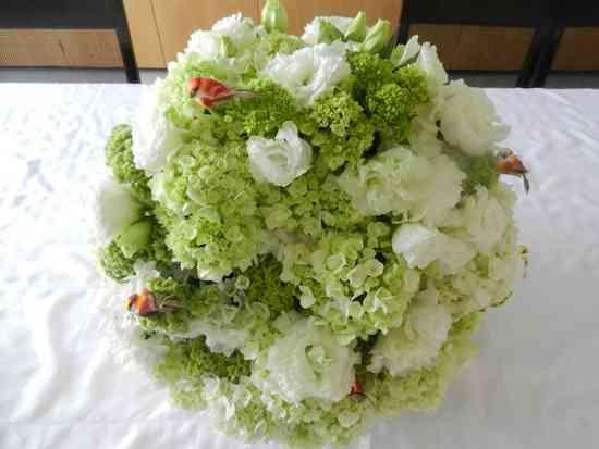 2013 06 Flores Anamaria 012