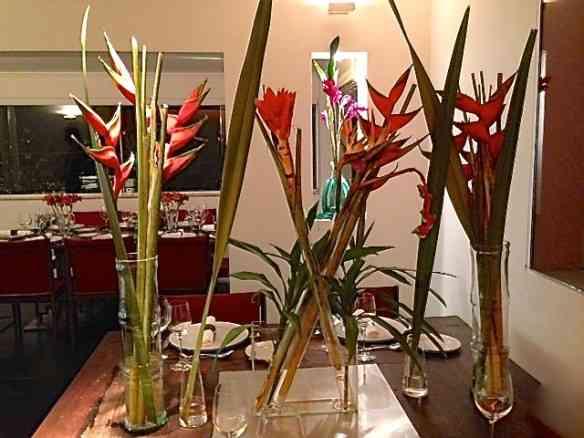 Vejam a beleza impactante das flores, exepcionalmente altas para o padrão da casa.
