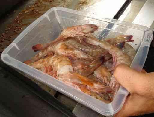 Eis os camarões para enfeitar....