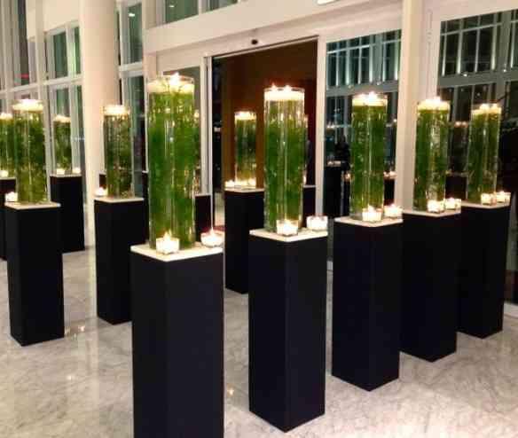 Uma alameda de colunas com flores e velas a nos receber...