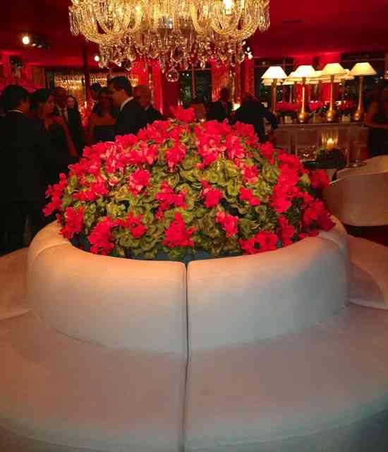Este sofá/vaso ficava na entrada, logo após o hall, premeditando o breque do casamento...