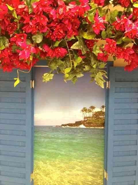 Vitrine linda da Via Flores prenunciando o verão!
