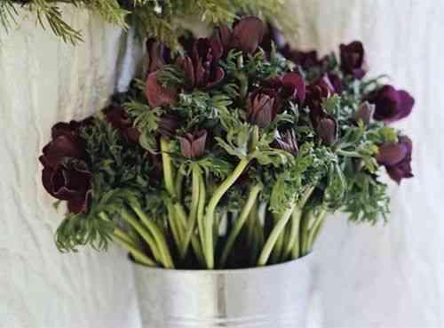 Imagina receber um punhado de flores como este?!