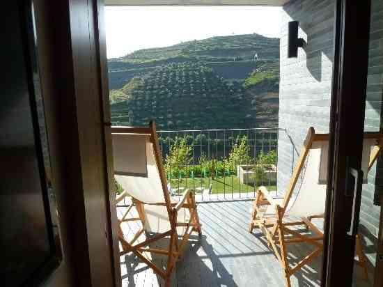Vistas do nosso quarto – só vinhedos e oliveiras...