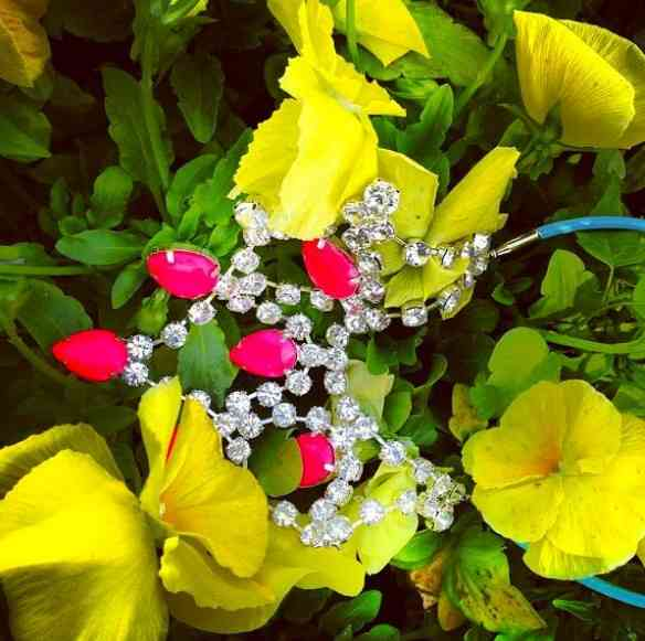 Divino o colar e as flores que o emolduram!