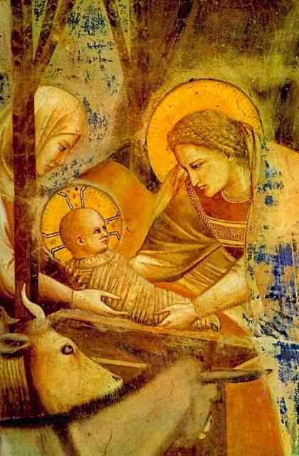 """Preciosa como o dia de hoje: """"Natividade"""", por Giotto, que comemora lindamente a chegada do Menino- Deus!"""
