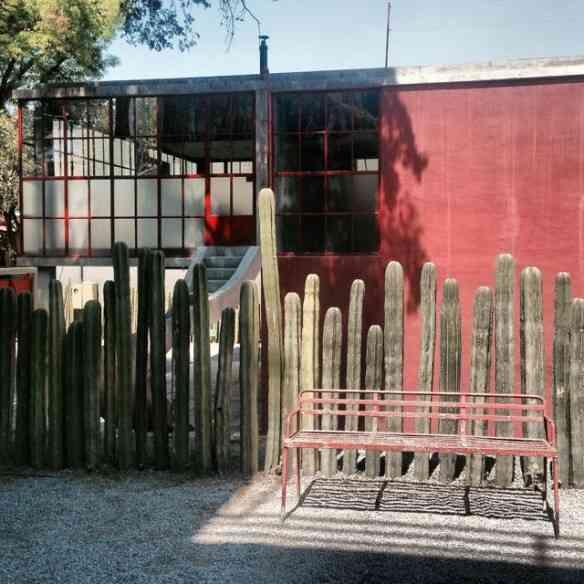 Amei esta cerca viva do Museu: