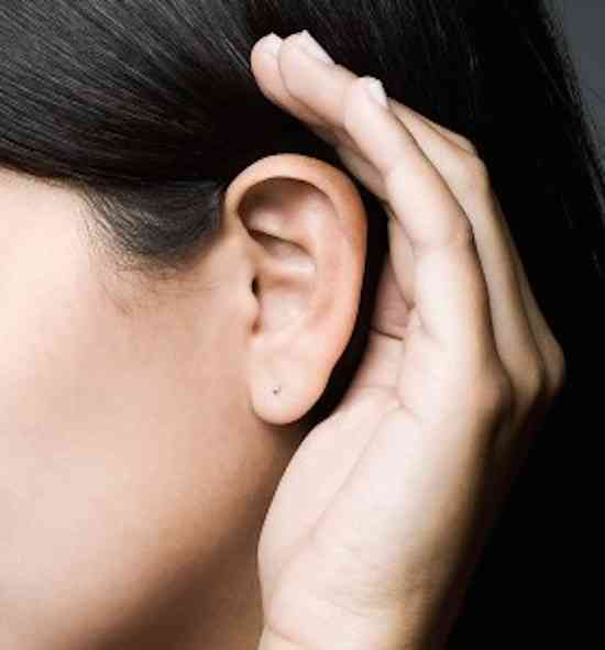 Lobulos-da-orelha--279x300