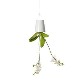 Achei fofa este lustre botânico.