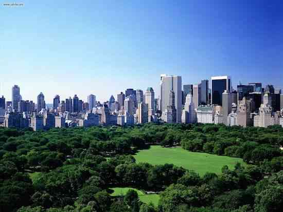 Saveology-New-York-Facts