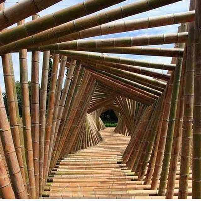 Ponte de bambus, espetacular!