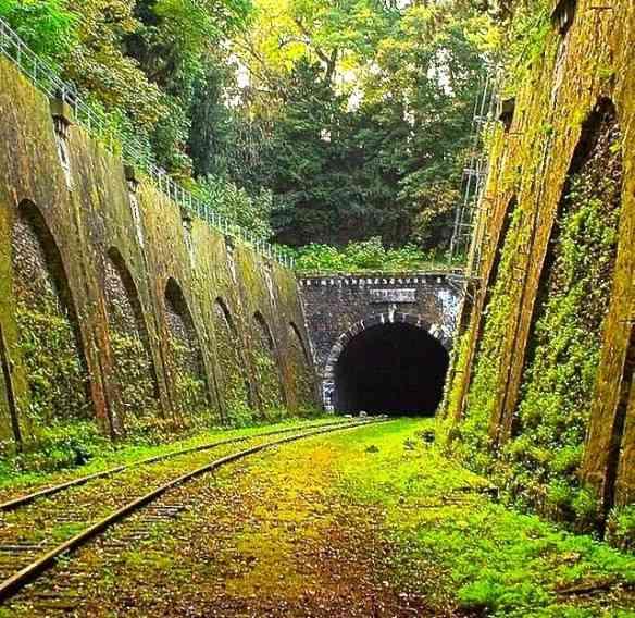 """Este é a """"Chemin de fer de petite ceinture"""", ferrovia parisiense também abandonada..."""