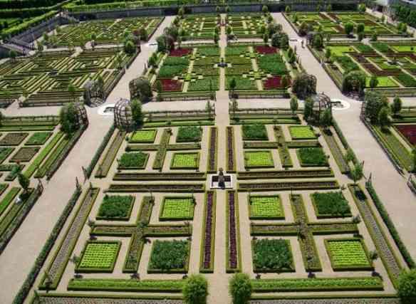 Seus lindos canteiros desenhados como os de um jardim e recheados como horta!