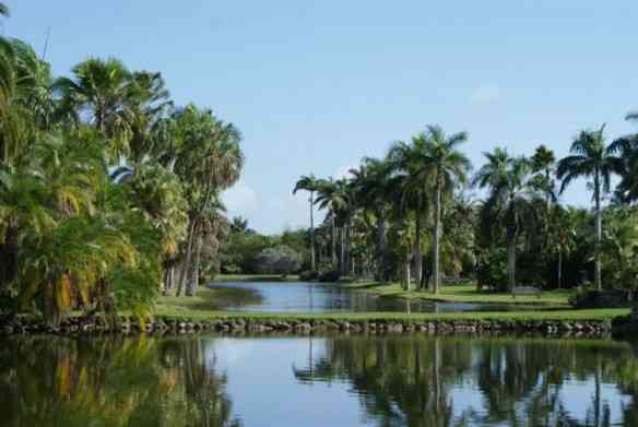"""Eis o deslumbrante """"Fairchild Botanic Garden""""!"""