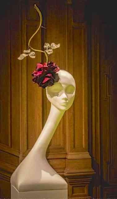 Voltando às flores e pra quem gosta de rosas, como eu!