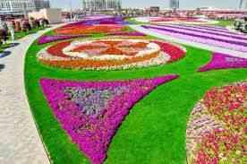 Um jardim formado por milhares de canteiros que enfatizam estrelas, corações, bichos, carros...