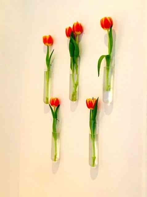 Deixo vocês com as singelas flores que enfeitam as paredes do