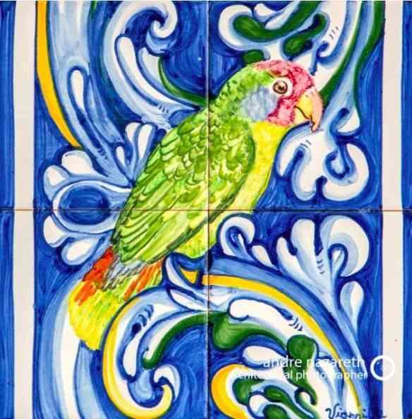 ... E com pássaros brasileiros!