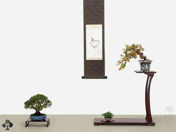 shohin-display-morten