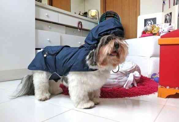 Mel fashion week: preparando-se para sair neste verão chuvoso!