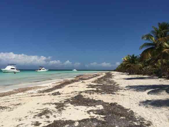 Uma deslumbrante praia em Cayo Blanco, nas vizinhanças de Varadero.