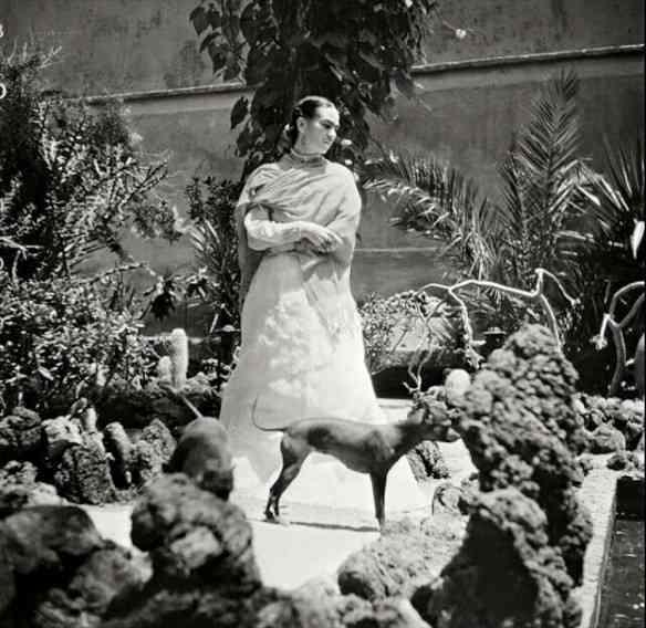 Amei o jardim com que a paisagista Paula Bergamin homenageou a divina Frida Kahlo!