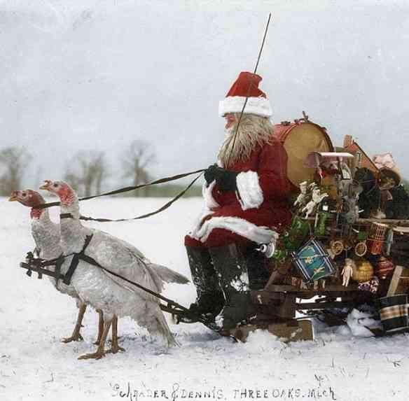 """Adoro Papai Noel """"vintage"""", puxado por... Gansos!"""