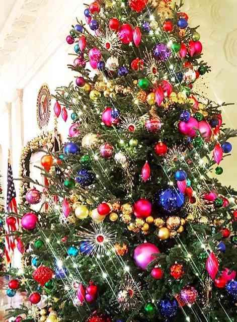 """Eis a árvore de Michelle Obama: """"La vie en rose""""..."""