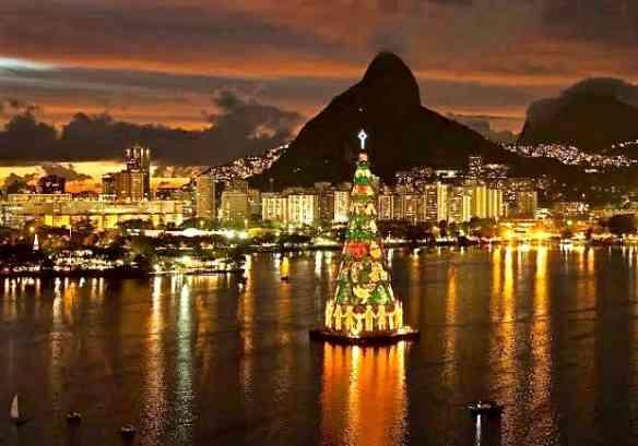 Fecho, com chave de ouro, com a árvore que mais amo: a da Lagoa Rodrigo de Freitas... Luxo só!