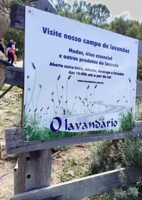"""Bem Vindos ao """"Lavandário de Cunha"""", nossa """"Provence Tropical""""..."""