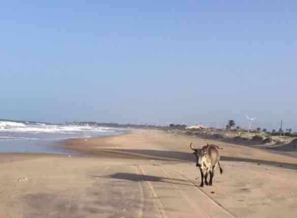 """Outro """"look"""" da praia..."""