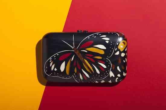 borboleta-pingadinha-fundo-amarelovermelho