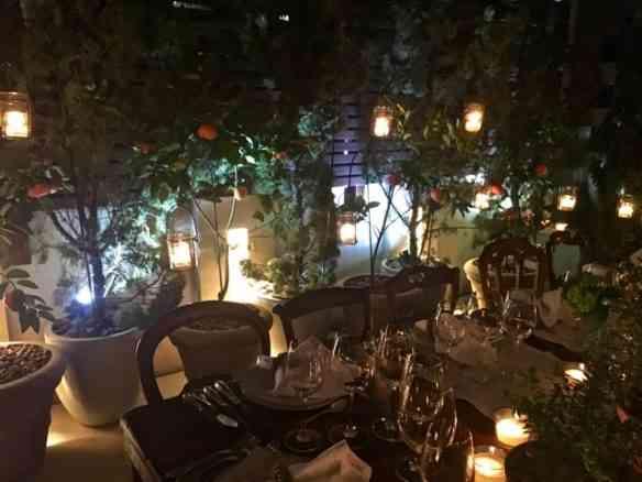 """Amei também estas tangerineiras que fez um maravilhoso """"fundo"""" para o quintal chiquérrimo onde jantamos... Varanda em pleno Leblon!"""